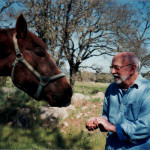 My father, 84, feeding a horse